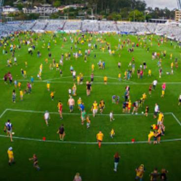 Central Coast Bluetongue Stadium