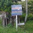 DOY Surf Shop